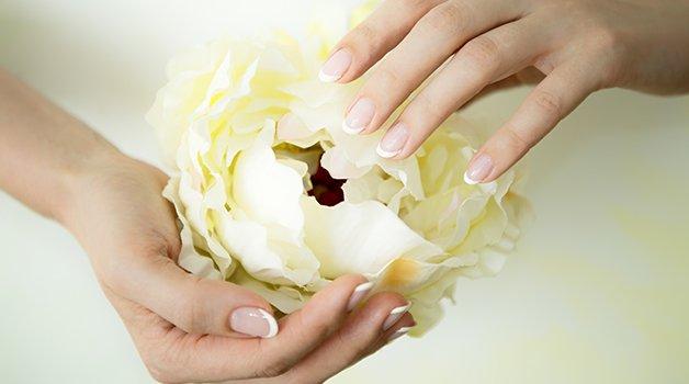 Mooie Witte Bloem In Handen Die Open Gaat