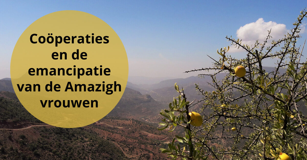 Arganbomen argannoten landschap Marokko emancipatie