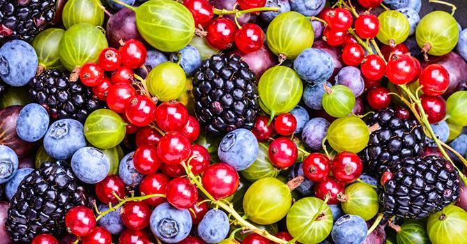 Ingrediënten Waar je op Moet Letten in Anti-Aging Producten