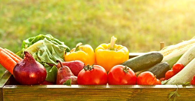 Waarom Je Organische Groenten Zou Moeten Kopen