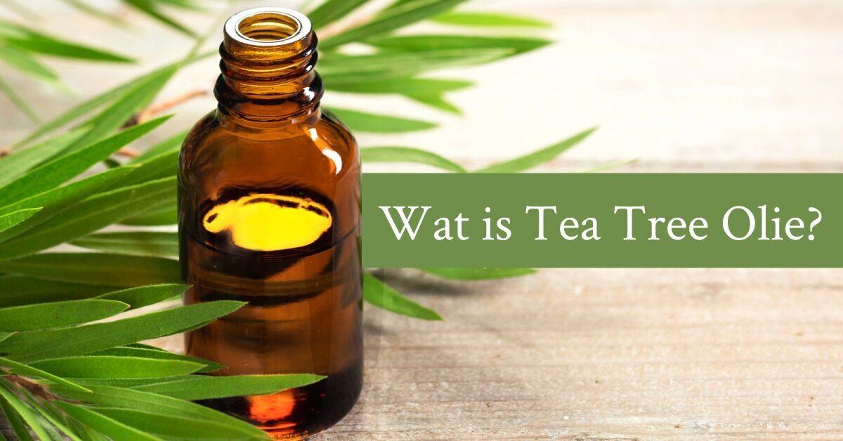Wat is Tea Tree Olie