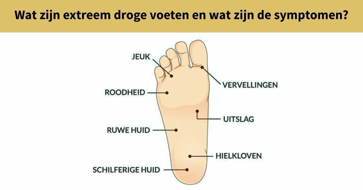 illustratie voet